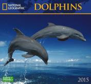 Dolphins Calendar