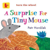 A Surprise for Tiny Mouse (Baby Walker) [Board book]