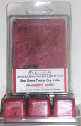 2 Pack Scented Soy Wax Melts-Cranberry Spice by The Scented Castle