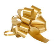 Premier Packaging AMZ-PF501 25 Count Flora Satin Pull Bow, 10cm by 46cm Loop