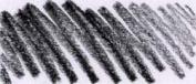 Caran D Ache Pablo Coloured Pencil #009 Black