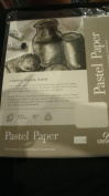Canson Pastel Paper 8.5*11, 98lb 12 loose sheet pack