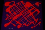 470ml Red Blacklight Reactive Fluorescent Tempera Paint