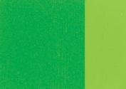 Holbein Artists Oil 40ml Cadmium Green Pale