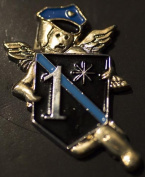 1-Ass-2-Risk Police Pin