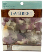 Laliberi Julie Comstock Pressed Flowers, Light Pointed