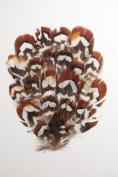 6 Pcs Pheasant Feather Pads - Natural Hazelnut