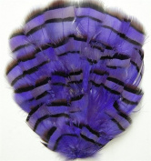 6 Pcs Grouse Pheasant Feather Pads - PURPLE
