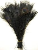 25 Pcs Peacock Feathers 25cm - 30cm Bleached BLACK