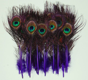 25 Pcs Peacock MINI Tail Feathers 5.1cm - 23cm Dyed PURPLE