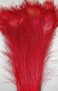 50 Pcs Bleached & Dyed Peacock Feathers 80cm - 90cm RED