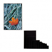 Itoya AE-11-17 Art Profolio Imagenvelope Storage With Polyglass 28cm x 43cm . Art Size CR