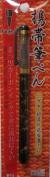 Platinum Japanese Chinese Calligraphy Fude Brush Pen