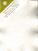 Shizen Design Professional Grade Watercolour Paper 23cm . x 30cm . deckle edges pack of 5