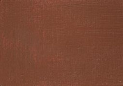 Burnt Sienna Susan Scheewe 60ml Tube of Artist AcrylicPaint By Martin F Weber