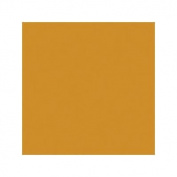 Royal Talens Gouache Extra Fine Quality, Deep Gold - 20ml tube