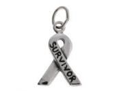 Sterling Silver Survivor Awareness Ribbon Charm