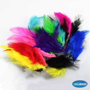 100 Pcs of Dyed Multi-colour Fluffy Rainbow Feathers 6.4cm - 8.9cm