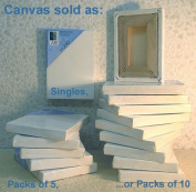 Art Alternatives 20cm x 25cm Pre-Stretched Studio Canvas
