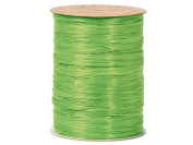 Berwick Wraphia Matte Rayon Craft Ribbon, 100-Yard Spool, Apple Green