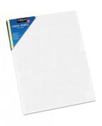 Sargent Art 90-3001 20cm x 25cm Flat Canvas Panel, 100% Cotton