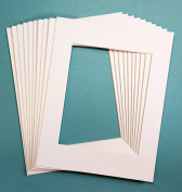 Pack of 20 WHITE 11x14 Picture Mats Matting with White Core Bevel Cut for 8x10 Pictures