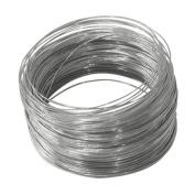 100' Galvanised Steel Wire