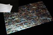 Blue Paua Shell Coated Adhesive Veneer Sheet