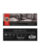 Pacific Arc Woodless Graphite Drawing Pencil Sets set of 6