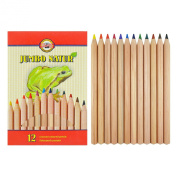 Koh-i-noor 12 Jumbo Natur Coloured Pencils with Special Finish. 2172