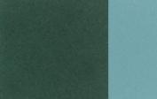 Holbein Artists Oil 40ml Cobalt Green