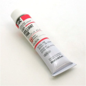 Holbein Extra-Fine Artists' Oil Colour 20 ml Tube - Brilliant Pink