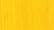 Michael Harding Artist Oil Colours - Cadmium Yellow - 40ml Tube