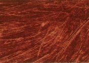 Williamsburg Oil Paint 23 Native Italian Earth Burnt Sienna 150ml tube