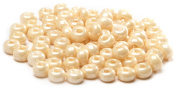 Beaders Paradise LT6E11 Czech Glass Eggshell 6/0 E-Beads in a Tube