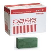 Oasis® Standard Floral Foam Maxlife