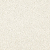 Wintry Fleece Ivory Fabric