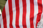 Stripe Poly Cotton Fabric Sold By the Yard Red & White
