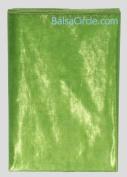 70cm x 6 yards Light Green (Kiwi) Sheer Organza