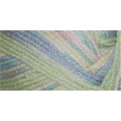 Premier Yarns Deborah Norville Collection Everyday Soft Worsted Prints Yarn