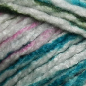 Premier Yarns Deborah Norville Serenity Chunky Variaged Cattails