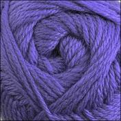 Cascade Yarns - Cascade Pacific Worsted Yarn Violet #38