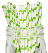 Polka Dot Paper Straw 25pcs Kiwi -Just Artefacts Brand