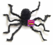 Hairy Spider - Small