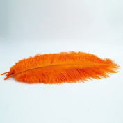 10pcs Ostrich Feather Orange 25cm - 30cm Natural Feathers Wedding, Party ,Home ,Hairs Decoration