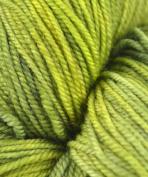 Malabrigo Sock - #138 Ivy
