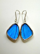 Blue Morpho Butterfly Wing Small Earrings