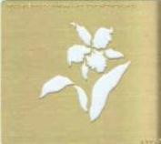 Ecstasy Crafts Square Stencil - Flower