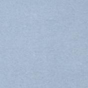 Sweatshirt Fleece Light Blue Fabric