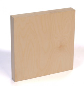 American Easel 15cm by 15cm by 4.1cm Deep Cradled Painting Panel
